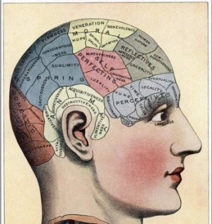 How Technology Wires the Learning Brain | School libraries for information literacy and learning! | Scoop.it