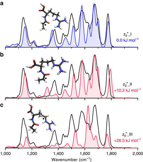 Open Source #Nature Comm: Structural ID of electron transfer dissociation products in mass spectrometry w/ infrared ion spectroscopy | Mass Spectrometry at Bruker | Scoop.it