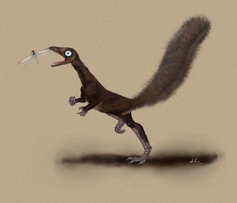 Les Dinosaures avaient-ils tous des plumes? | Nature insolite | Scoop.it