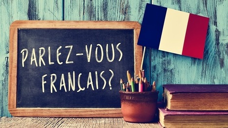 French eLearning Market: Is France Still Lagging Behind In eLearning? - eLearning Industry | Scoop4learning | Scoop.it