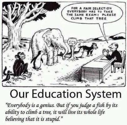 Tweet from @TriippyVibes   21st Century Education - Skills & Issues   Scoop.it