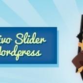 Come trasformare Nivo Slider in un widget per WordPress? | Conoscere Wordpress | Scoop.it