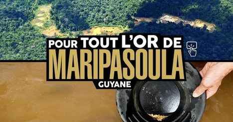 Guyane : pour tout l'or de Maripasoula | Narration transmedia et Education | Scoop.it