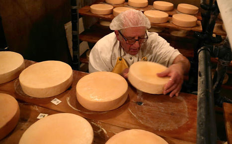 The Cheesemaking Monk of Manitoba - Modern Farmer   enjoy yourself   Scoop.it