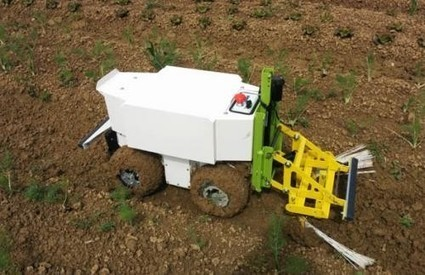 Oz, premier robot agricole pour labourer sans pesticides | Toulouse networks | Scoop.it