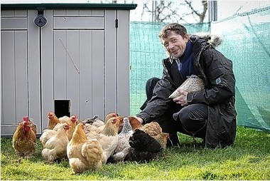 Chickens: The pets that give you something back every day | Urban Chicken Keeping | Scoop.it