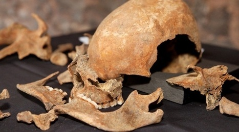 Charterhouse skeletons were Black Death victims | News in Conservation | Scoop.it