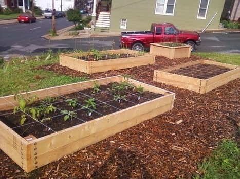 How to Build a Raised Garden Bed | Complete Tanks and Pumps | Scoop.it