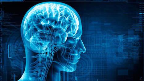 La dyslexie, un problème de connectivité dans le cerveau - 7sur7 | Alice | Scoop.it