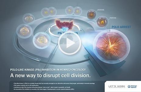 Focus on plk inhibition | Cancer Care | Scoop.it