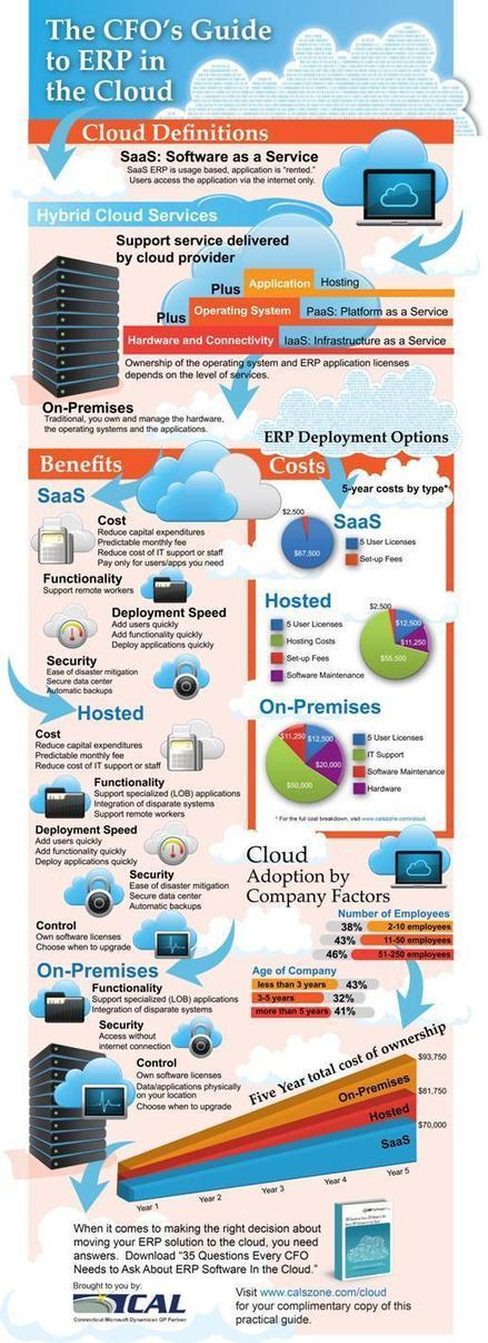 InfoGraphic: A CFO's Guide To ERP In The Cloud - goERPcloud | Seo | Scoop.it
