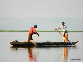 La saison de la pêche lancée au Katanga | CONGOPOSITIF | Scoop.it