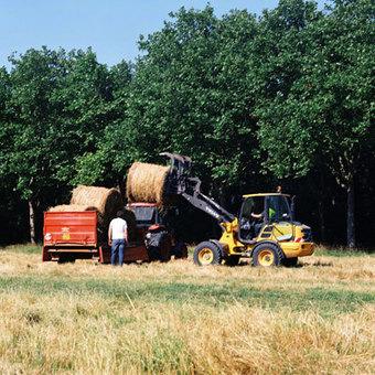 Le temps de la moisson au bois de Vincennes   Ca se passe au jardin   Agriculture urbaine, architecture et urbanisme durable   Scoop.it