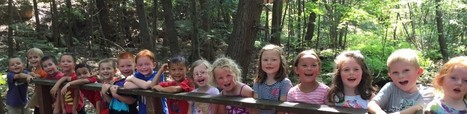 Music in the Woods | The KinderKids Classroom | Kindergarten | Scoop.it