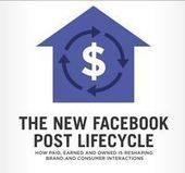 How to benefit from the Facebook post lifecycle | Social Media, SEO, Mobile, Digital Marketing | Scoop.it