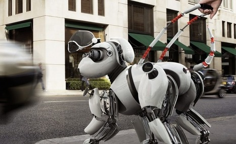 "After ""Taking"" People's Jobs, Robots Could Soon Replace Guide Dogs Too 