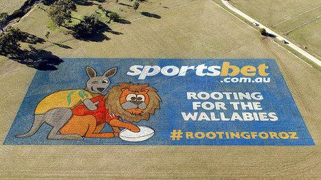 Je l'aime bien moi cette pub! #Wallabies #Lions2013 | News British & Irish Lions Tour 2013 to Australia | Scoop.it