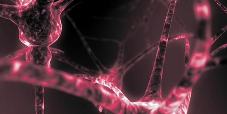 Ces synapses artificielles rivalisent avec celles du cerveau humain | Post-Sapiens, les êtres technologiques | Scoop.it