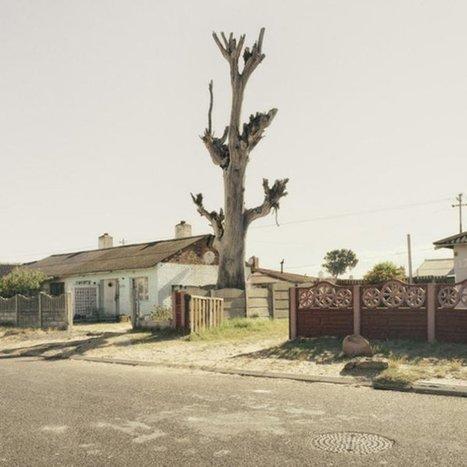 Cahier critique - Retour vers le futur - Afrique in visu | art move | Scoop.it