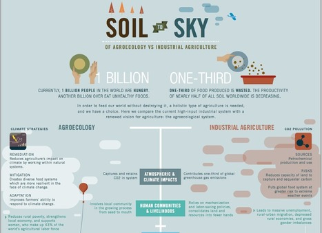 Agroecology: The Alternative of the Future? | Eco-Development & Agro-Ecology | Scoop.it