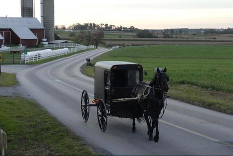Amish Buggy Accident with Truck Kills 2 | Amish | Scoop.it
