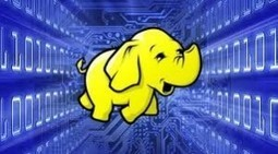 Closing the Hadoop Skills Gap Requires A Two-Front Attack | ServicesANGLE | world of data | Scoop.it