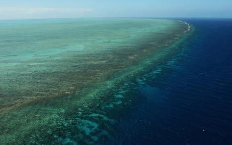Emergency forced jets to drop 4 unarmed bombs on Great Barrier Reef: US official   Geek Tech   Scoop.it