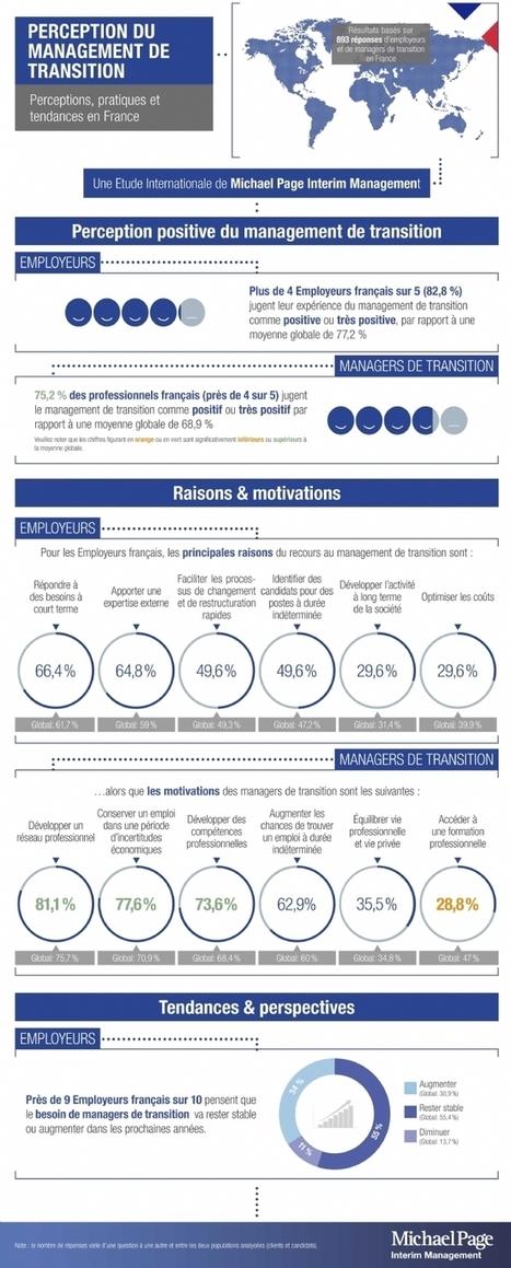 Le management de transition a la cote auprès des entreprises - Chefdentreprise.com | CIO & Digital | Scoop.it
