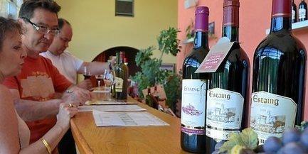 Les vins d'Estaing, plus petit vignoble AOC de France   Epicure : Vins, gastronomie et belles choses   Scoop.it