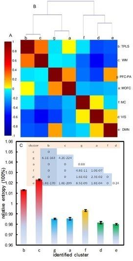 Brain Entropy Mapping Using fMRI | Social Neuroscience Advances | Scoop.it