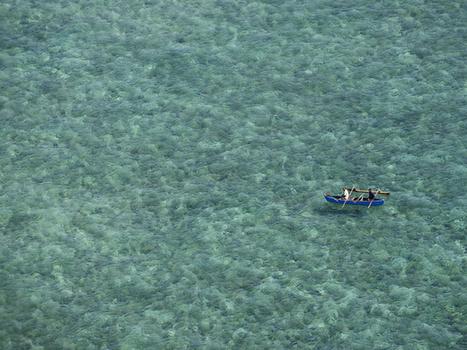 Mayotte – Lagon à l'agonie   Le tourisme durable   Scoop.it