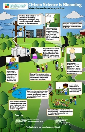 National Environmental Education Foundation | Citizen Science Infographic | Wiki_Universe | Scoop.it