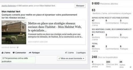 Test d'une publicité Facebook en BtoB | Facebook pour les entreprises | Scoop.it