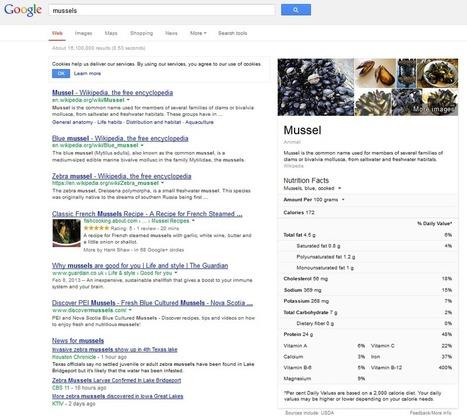 Google Trends lève le voile sur la puissance de Google Knowledge Graph   Curation par www.referencement-la-rochelle.fr   Scoop.it