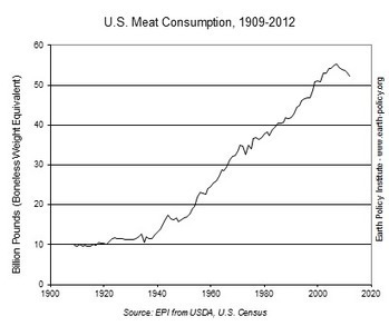Peak Meat: U.S. Meat Consumption Falling | The Great Transition | Scoop.it