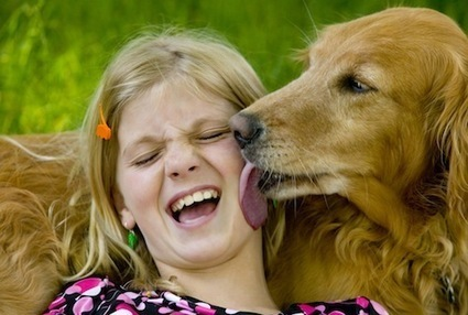 Canine Empathy | Empathy and Animals | Scoop.it