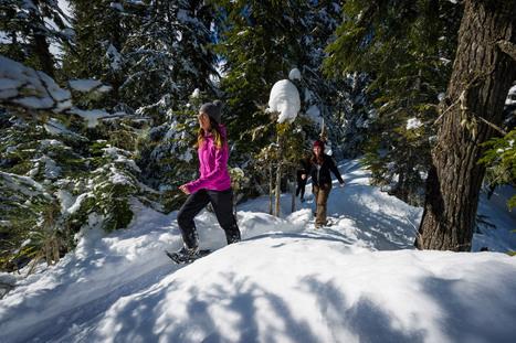Whistler Winter Season Snowshoeing Adventures   Whistler, BC, Canada   Scoop.it