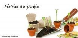 Février au jardin | So What? Votre magazine féminin en ligne | Potager & Jardin | Scoop.it