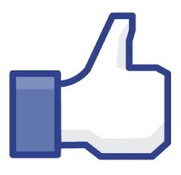 Facebook Ads Improve Results for Search Campaigns | Search Engine Marketing Trends | Scoop.it
