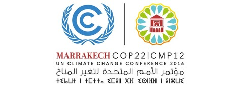 Alianza por el Clima hace un llamamiento a la efectividad | Ecologistas en Acción | Climax | Scoop.it