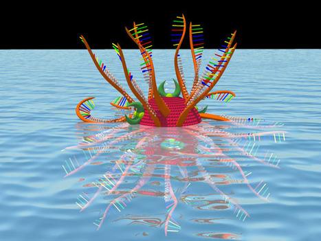 Nanoparticle Completely Eradicates Hepatitis C Virus - IEEE Spectrum | Innovación Medica | Scoop.it