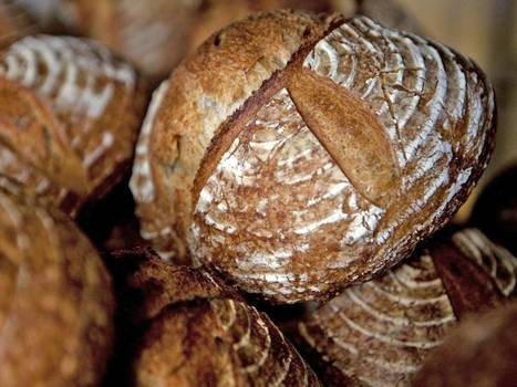 Give us our daily artisan bread: How did we gain a passion for seeded ... - The Independent | bread | Scoop.it
