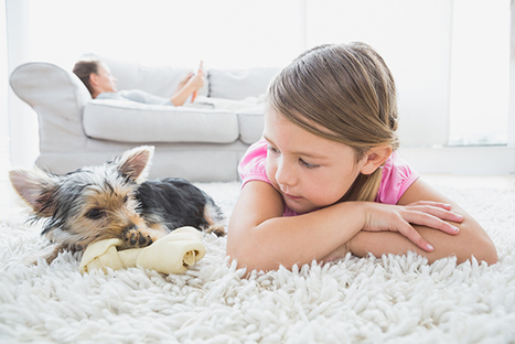 Pets and Children are a Potential Source of C. difficile in the Community | McGill University Health Centre | Nurse Innovators | Scoop.it