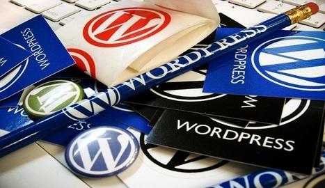 20 videos para aprender todo lo necesario sobre Wordpress - Nerdilandia   Educacion, ecologia y TIC   Scoop.it