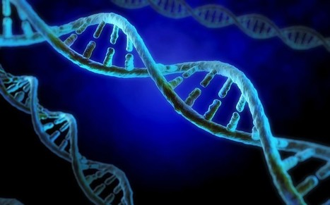 Children could have DNA tested at birth - Telegraph | Health Medicine N'Science | Scoop.it