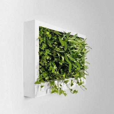 Custom Vertical Gardens Instantly Green Up Any Interior | Designs & Ideas on Dornob | Urban Design | Scoop.it