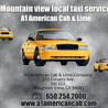 A1 American Cab & Limo Company