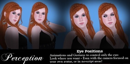 Dreamer's Virtual World - Free Eye Positions for Photography | Free Stuff in Second Life | Scoop.it