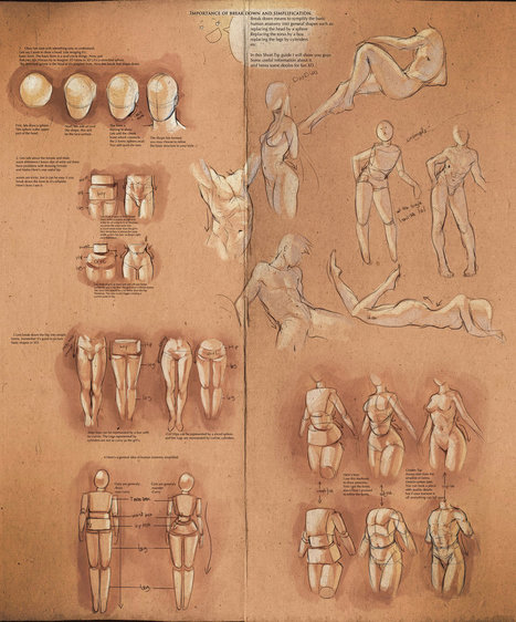 Simplify Human Anatomy guide by sakimichan on deviantART | Drawing References and Resources | Scoop.it