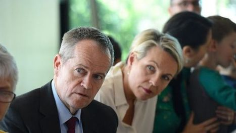 Labor to torpedo same sex marriage plebiscite as new poll finds two-thirds want vote in Parliament | Gay News | Scoop.it